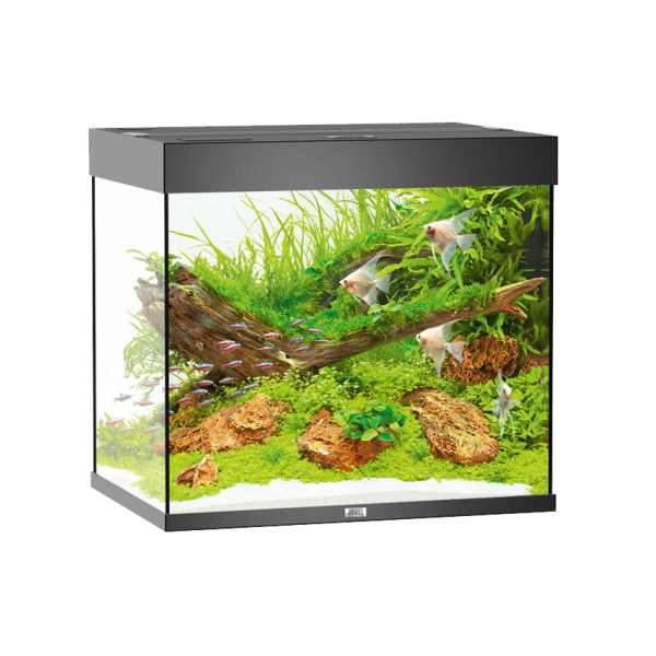 lido 200 led aquarium aquacare. Black Bedroom Furniture Sets. Home Design Ideas