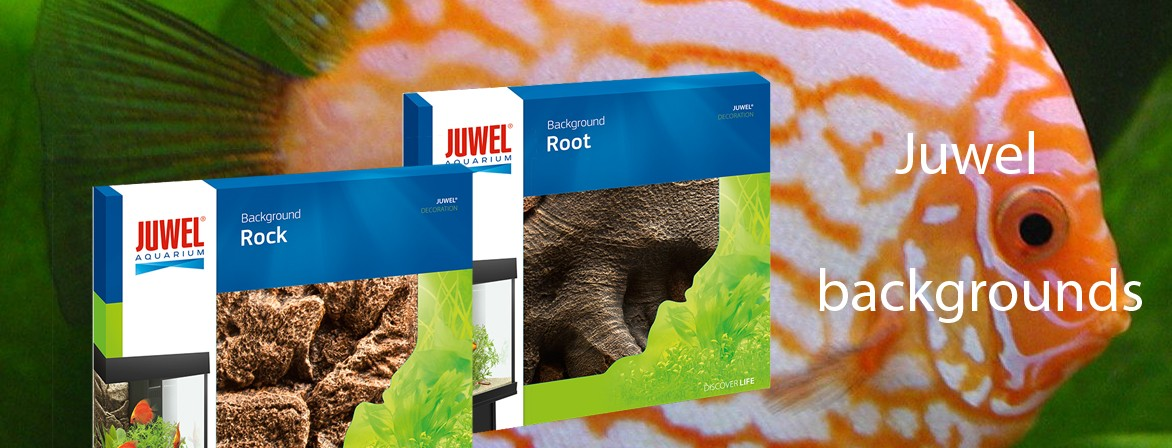 Juwel decoration products